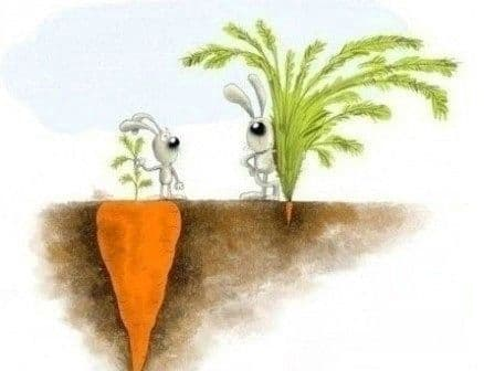 Life lesson: things aren't always as they seem